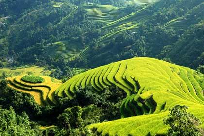 Khám phá vẻ đẹp ruộng bậc thang ở Lào Cai