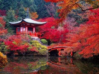 """Thăm các """"thiên đường mùa thu"""" ngập tràn lá phong"""