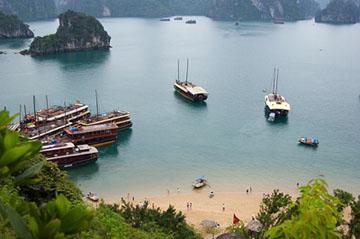 Việt Nam quê hương tôi - giấc mơ về một xứ sở thanh bình