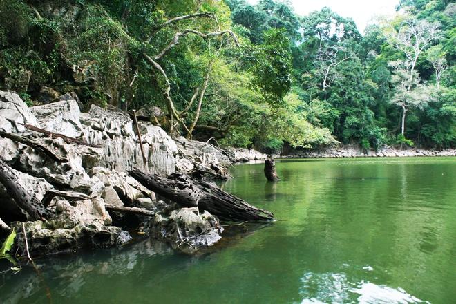 Sắc xanh ngập tràn hồ Ba Bể