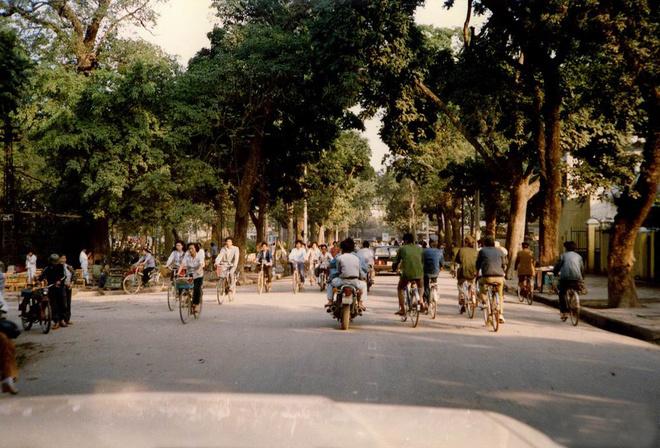 Hà Nội rợp bóng cây những năm 1990