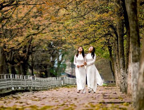 Đợi đến mùa thu để yêu thêm Hà Nội