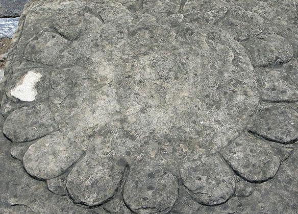 Một số hiện vật bằng đá của Hoàng thành