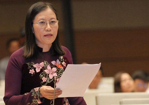 Chủ nhiệm Ủy ban Tư pháp: Chính phủ cần kiểm tra việc 'bổ nhiệm người nhà'