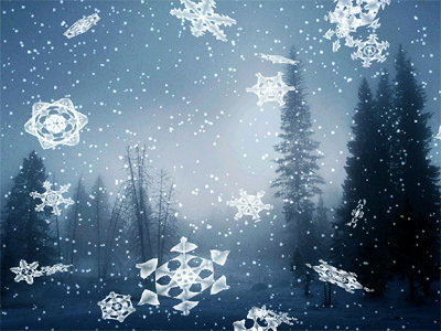 Mùa hoa tuyết