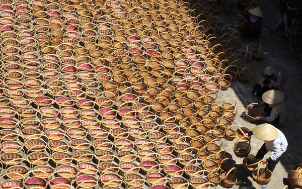 Làng nghề đan cỏ tế Lưu Thượng
