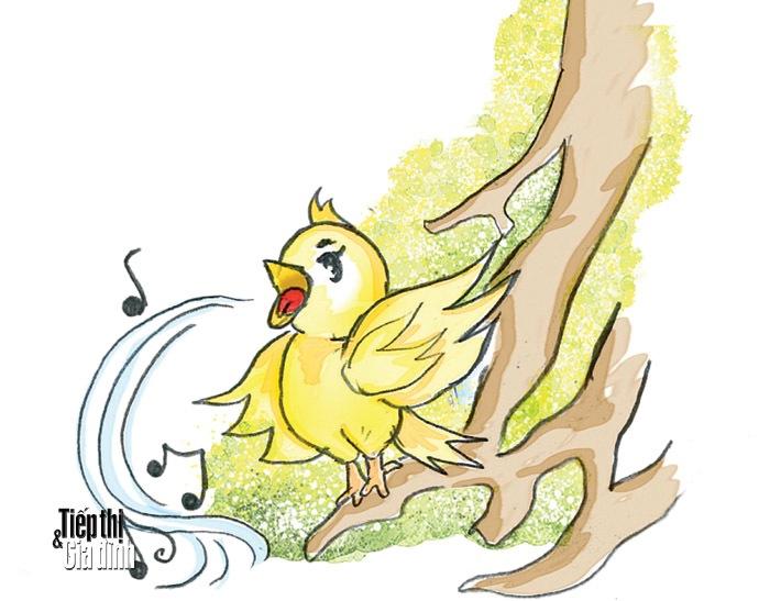 Chim hát