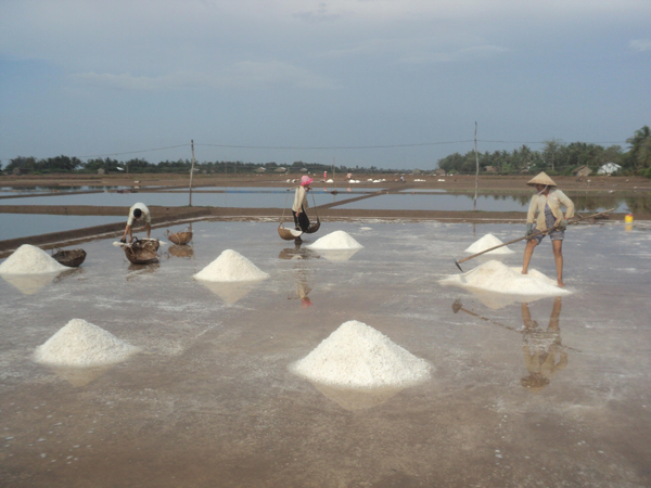 Muối Cồn Cù chắt chiu từ vị mặn của biển