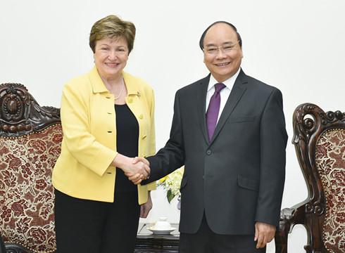 Tổng Giám đốc Ngân hàng Thế giới ấn tượng khi đến thăm Việt Nam