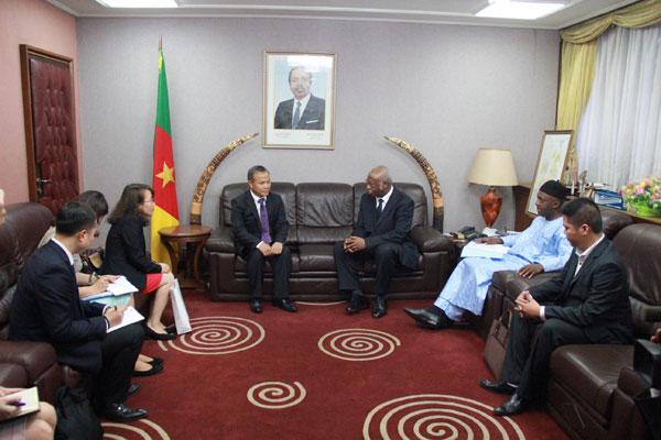Đặc phái viên Chủ tịch nước, Thứ trưởng Ngoại giao Vũ Hồng Nam thăm Cộng hòa Ca-mơ- run
