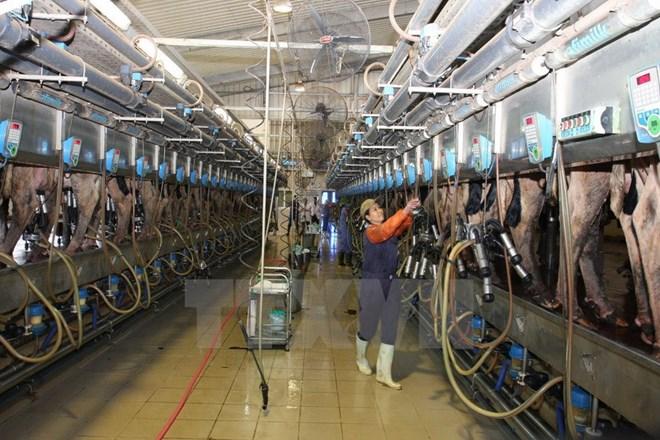 TH True Milk đầu tư 220 triệu USD vào Cộng hòa Bashkortostan thuộc Nga
