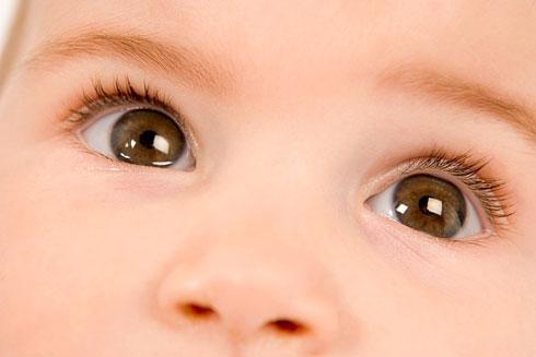 Đôi mắt biết nói