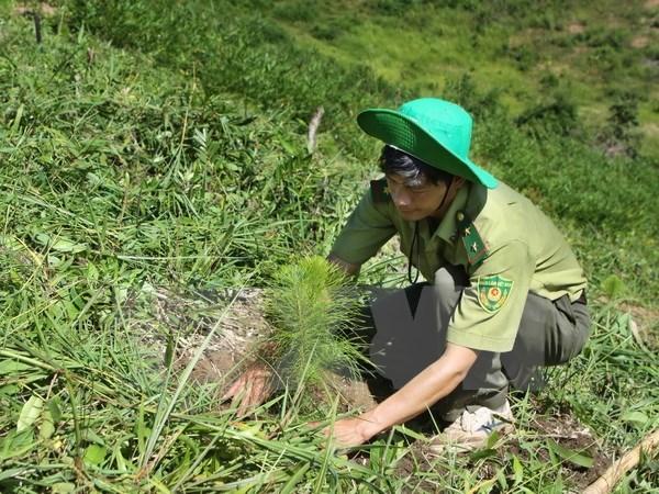 Việt Nam cam kết thực hiện thành công mục tiêu phát triển bền vững