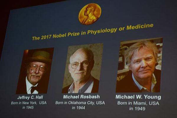 Ba nhà khoa học Mỹ giành Nobel Y học 2017