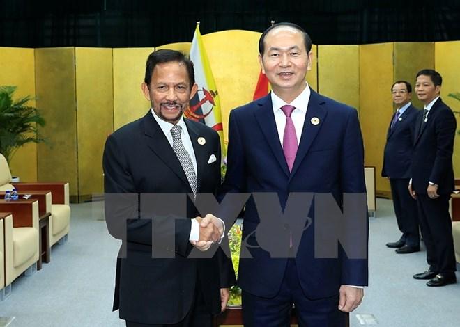 Chủ tịch nước Trần Đại Quang gặp song phương Quốc vương Brunei