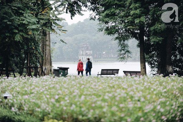 Hà Nội đẹp lãng mạn trong gió lạnh đầu đông