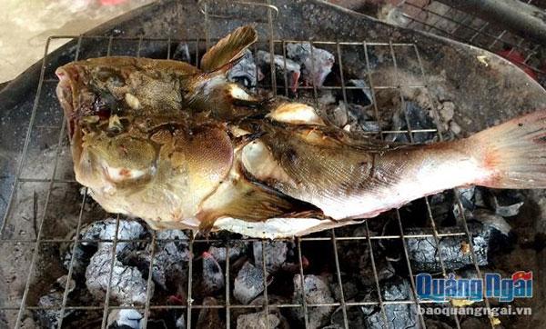 Cá bồng bồng thơm lừng nơi ngư dân miền biển