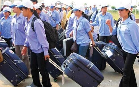 Nhật yêu cầu bắt buộc xét nghiệm lao người Việt xin thị thực dài hạn