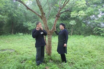 Chợ tình Xuân Dương - Nét văn hóa trong cộng đồng người Tày, Nùng