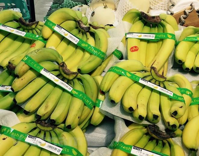 Những lưu ý cho doanh nghiệp Việt khi xuất khẩu chuối sang Trung Quốc