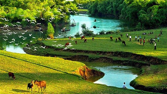 Dòng sông quê Bác