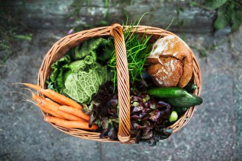 Dinh dưỡng ảnh hưởng đến não như thế nào
