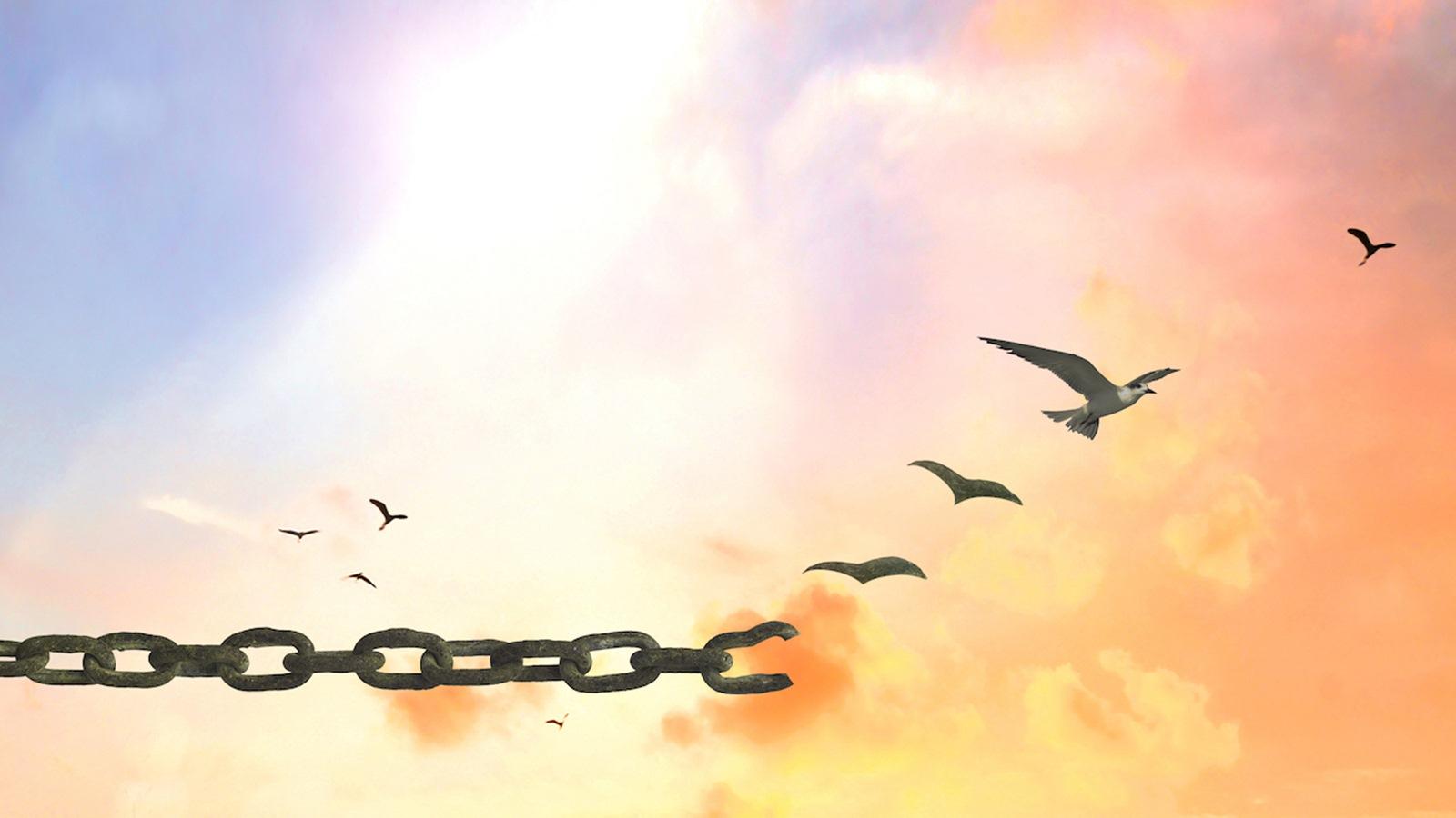 Tại sao chúng ta nên tha thứ cho người khác?