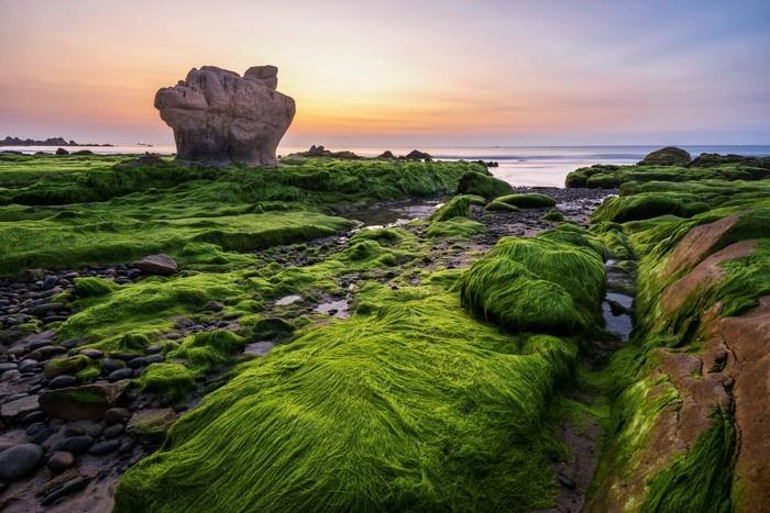 Tới Cổ Thạch, đắm chìm trong mùa rêu xanh và bãi đá kỳ ảo