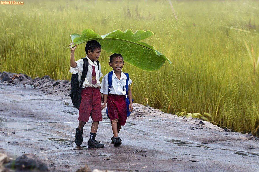 Con đường đi học ngày xưa...