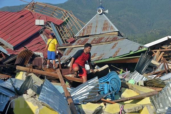 Việt Nam hỗ trợ Indonesia 100.000 USD khắc phục hậu quả động đất