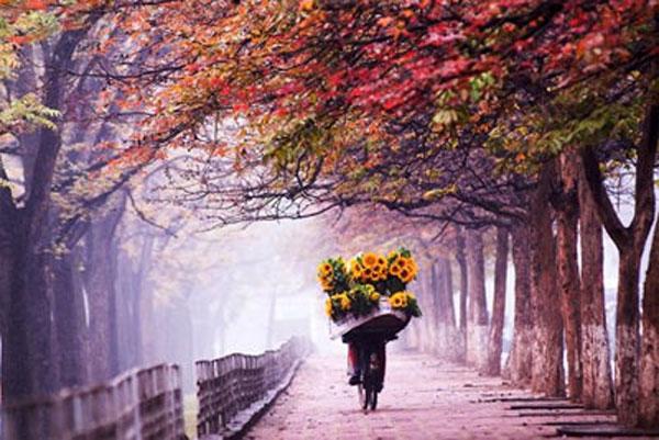 Hà Nội mùa heo may