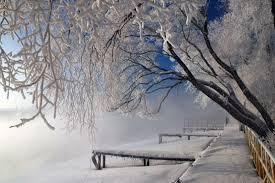 Giấc mơ mùa đông