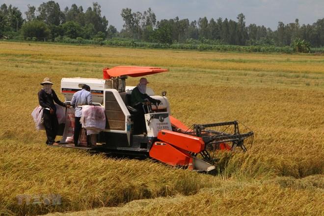 70% lao động nông thôn chưa được học nghề, ít người có chứng chỉ