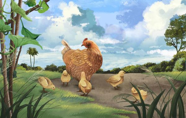 Tiếng gà trong ký ức