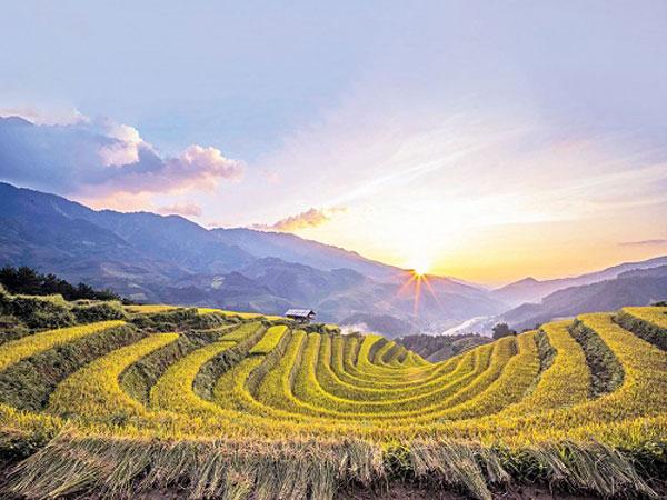 Mù Cang Chải: Thung lũng bình yên thơm hương lúa