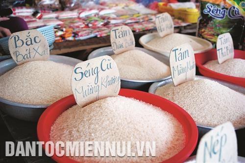 Gạo Séng Cù, niềm tự hào của người Tây Bắc