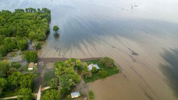 Mưa bão hoành hành ở Trung Mỹ, nhiều khu vực chìm trong nước lũ