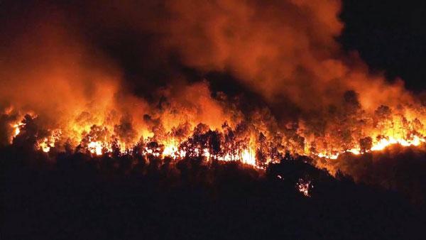 Cảnh báo nguy cơ cháy rừng tại nhiều nước ASEAN
