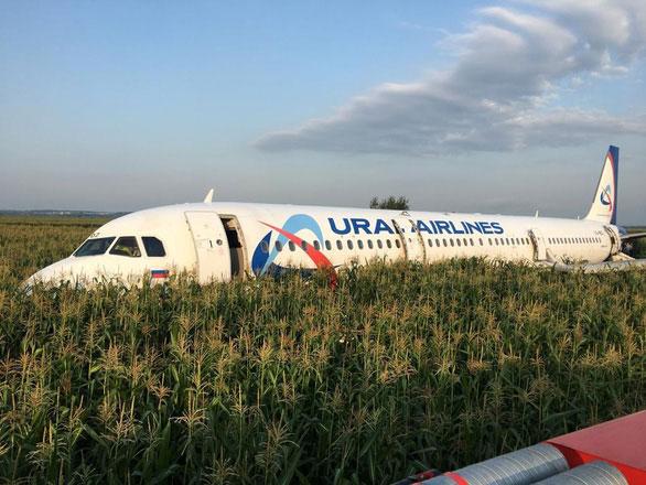 Máy bay Nga hạ cánh khẩn cấp do chim bay va vào động cơ, 23 người bị thương