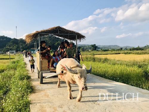 Khám phá du lịch cộng đồng bản Che Căn