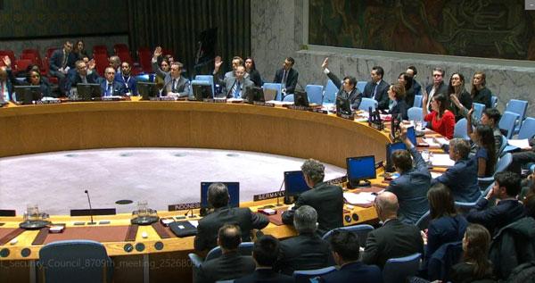Hội đồng Bảo an họp về gia hạn hoạt động của UNFICYP và nghe Báo cáo của UNSMIL