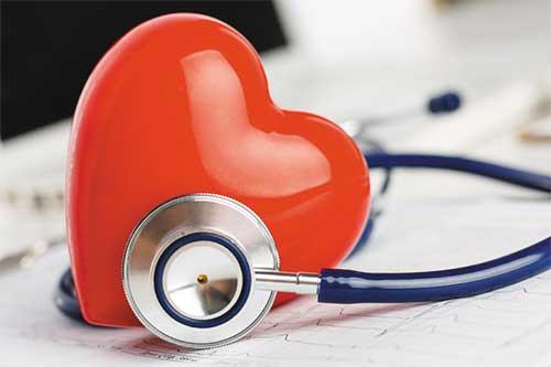 Trái tim sợ nhất là sự mệt mỏi