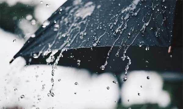Những cơn mưa tháng Ba