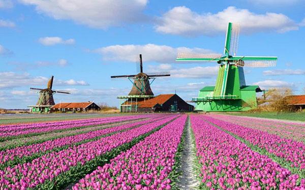 """Hà Lan - """"Xứ sở cổ tích"""" của châu Âu"""