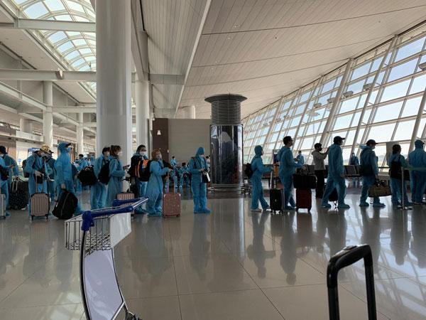 Thêm gần 340 công dân Việt Nam từ Hàn Quốc về nước an toàn