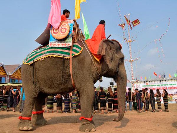 Phục sức cho voi nhà Buôn Đôn