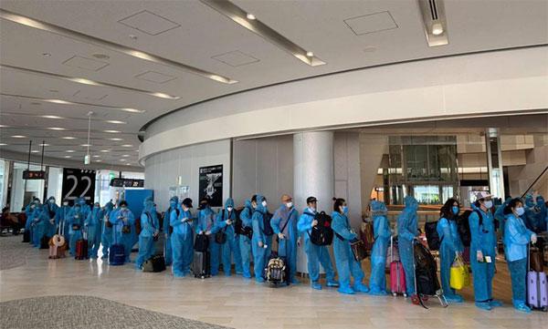 Hơn 340 công dân Việt Nam ở Nhật Bản hồi hương