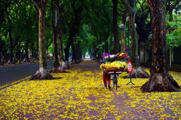 Hà Thành Hạ