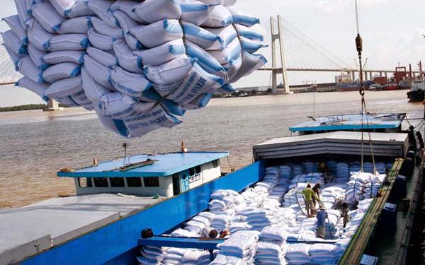 Cơ hội nào cho gạo Việt tại EU?