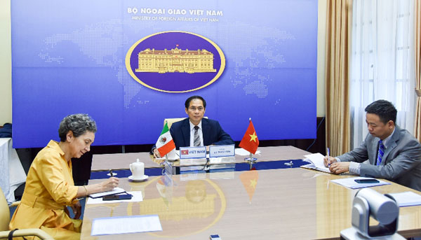 Hội đàm trực tuyến giữa Thứ trưởng Thường trực Bộ Ngoại giao Bùi Thanh Sơn và Thứ trưởng Ngoại giao Mexico